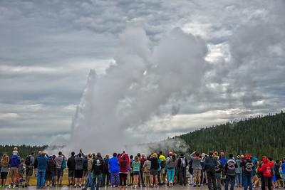 Richards___Old Faithful