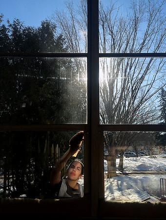 SUNNY WINDOW WASHER