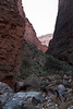Brandon, Ribeka, and I went up this little side canyon for a quick predinner hike.