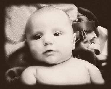 13 Brennan 11 Weeks Old (10x8) softfocus b&w bleachbypass oldphoto