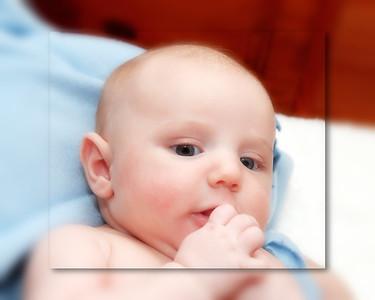 12 Brennan 11 Weeks Old (10x8) softfocus