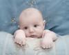 07 Brennan 11 Weeks Old (10x8) softfocus halfdesat