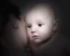 03 Brennan 11 Weeks Old (10x8) softfocus bokeh halfdesat