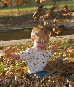 033 Wiley Family At Shaw - Brielle Playing In The Leaves crop