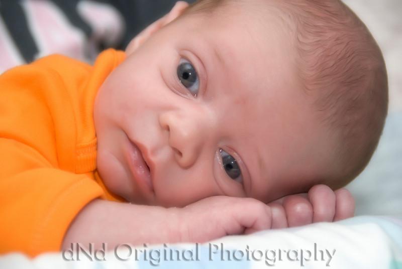 090 Matt, Ami, Cooper Nicol Family Pictures