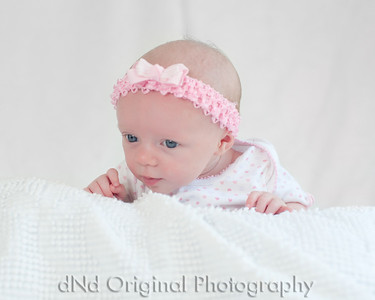 28 Faith - 5 weeks old (10x8)