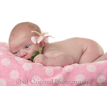 05 Faith - 6 Days Old (10x8)
