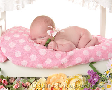 06 Faith - 6 Days Old (10x8)