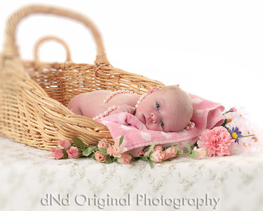 08 Faith - 6 Days Old (10x8)