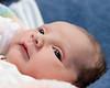 06 Kyla Nicole Tomicich 1 day old