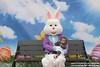 Easter Bunny Photos 2016