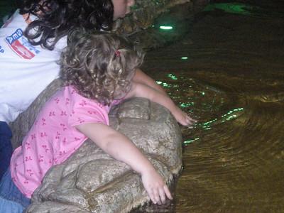 Audrey - Summer 2008