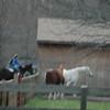 Lindsey next door neighbor.