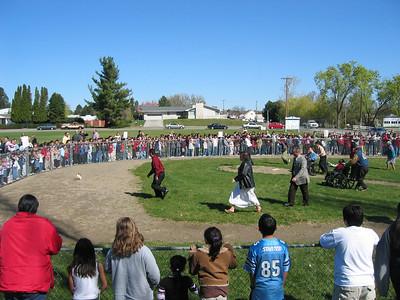 Chicken Chase Sunday 2007