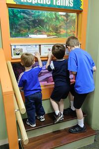 Dinosaur State Park 6-8-2013