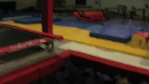 Gymsport 11/29/11