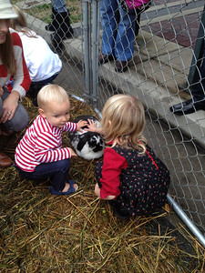 We saw a small petting zoo, and Thal really enjoyed it.