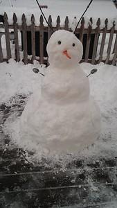 Kyle's Snowant