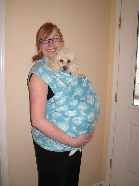 New sling wrap from Great Granny and Grampa.   Decided to try it out with the puppy.