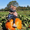 Pumpkin Patch Plus