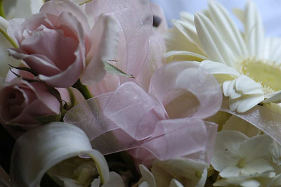 Beautiful roses and lilies from Southern Progress.
