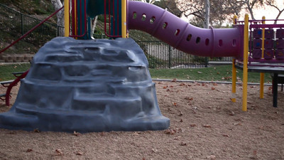 Video of Honey and the boys at the playground.