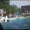 19 Jul 1968 2