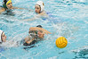 Grandville Girls Water Polo 2008 : 7 galleries with 3842 photos