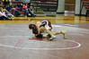 Grandville Wrestling 2010-11 : 10 galleries with 7962 photos