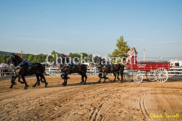 Draft Horse Show - Grange Fair - Chuck Carroll