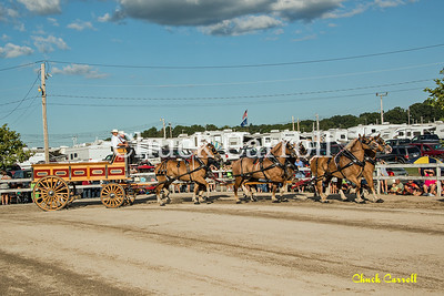 Grange Fair - Draft Horse Show - Saturday 8-24-2013