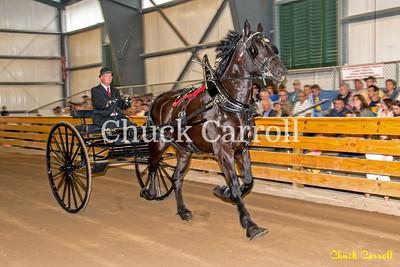 Draft Horse Show - Grange Fair - Thursday -  Chuck Carroll
