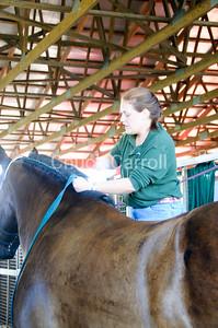 Grange Fair 2010   --  Thursday Draft Horse Show - Morning  --  Centre Hall Pennsylvania