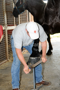 Grange Fair 2010   --  Thursday Draft Horse Show - Morning  --  Centre Hall Pennsylvania