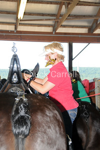 Grange Fair 2010 --  Friday Draft Horse Show  --  Centre Hall Pennsylvania  - Six Horse Hitch