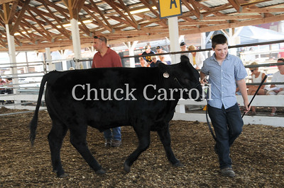 Grange Fair 2010   --  Tuesday & Wednesday Images of the Day