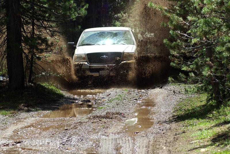 Mud Boggn' F-150 pic3