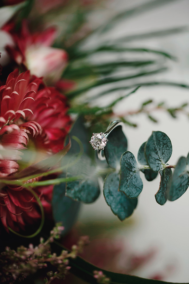 Clarity Photography by Krystal Dempsey