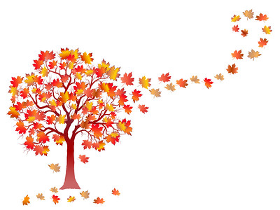 Fall background with colorful tree and  falling leaves isolated on white background. Elegant design with copy space. Editable, can be used on brochures, posters etc. Vector and raster format.