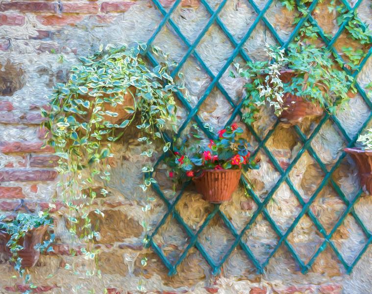 Italian hanging plants