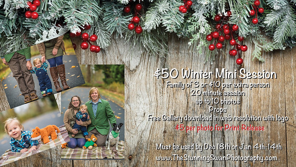 Winter Mini Session