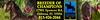 Fantasy-460x90-webbanner
