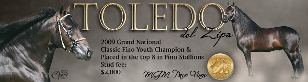 Toledo (web banner)