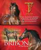 BizCard-Bribon