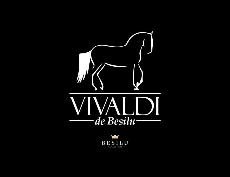 Besilu-Vivaldi Tshirt-Spectrum2019