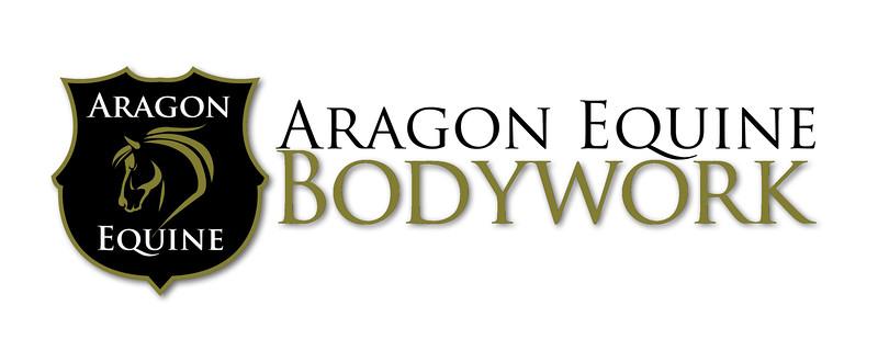 ARAGON-Logo-DropShadow-RGB-HighRes