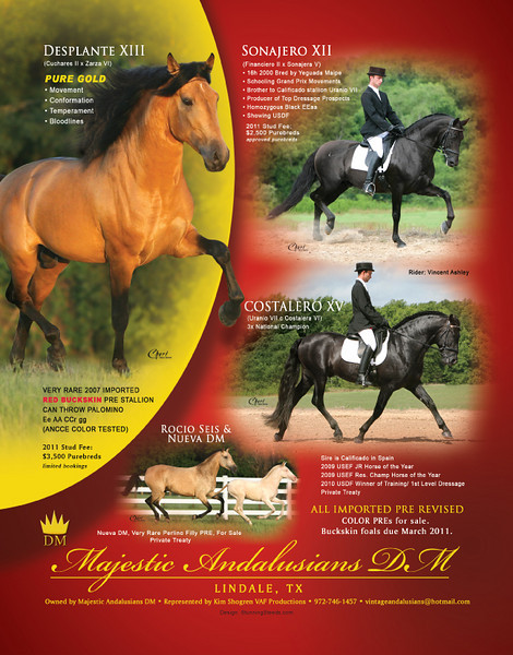 MajesticAndalusians