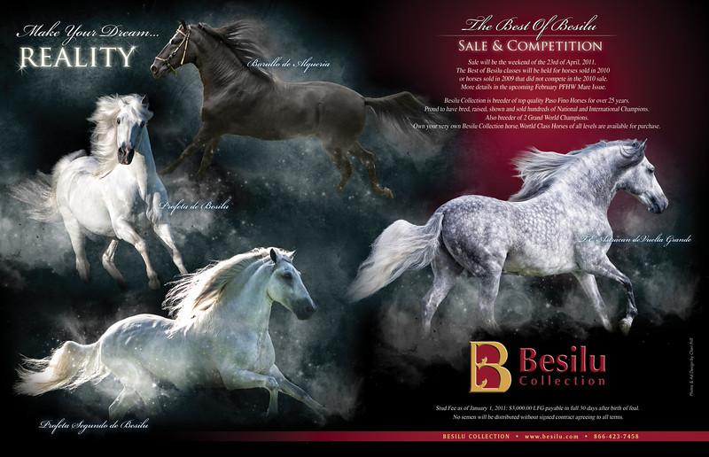 Besilu-2pgspread-Jan11-PFHW2-lr