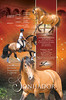 Lusitano stallion. IALHA Handbook ad