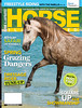 Horse Illustrated Cover 2013